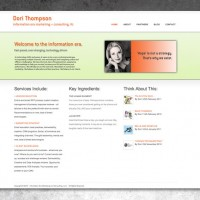Information Era Marketing and Consulting - Website Development
